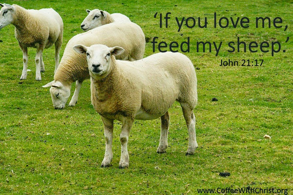 With what shall I feed them Lord