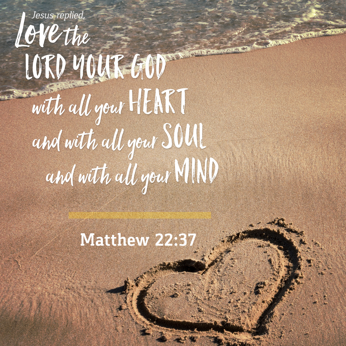 6 Essentials for the Christian Life – Seek and Love God